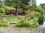 hammond Garden_spring_DSC02060