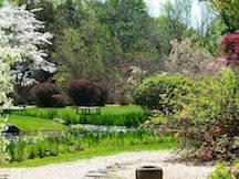 Mother's_Day_2015_garden pond